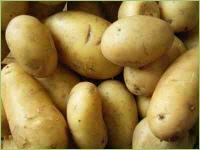 Unkrautmittel für Kartoffeln - Unkraut in Kartoffeln bekämpfen