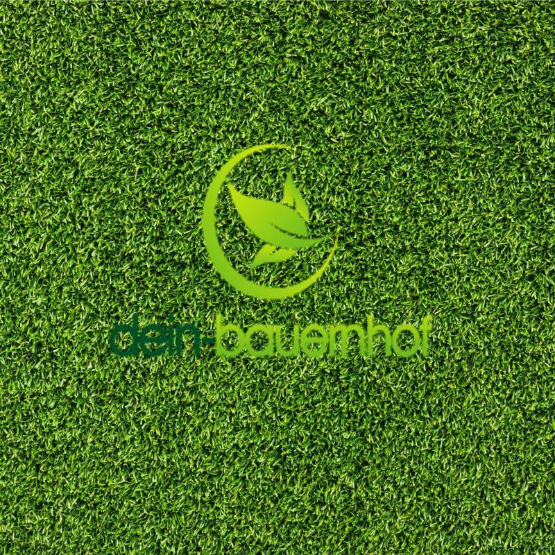 Rasen Berliner Tiergarten 10 Kg Preiswert Edel Gras Saatgut